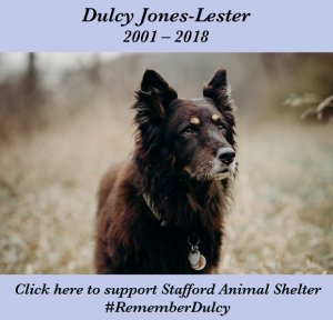 Click here to support Stafford Animal Shelter